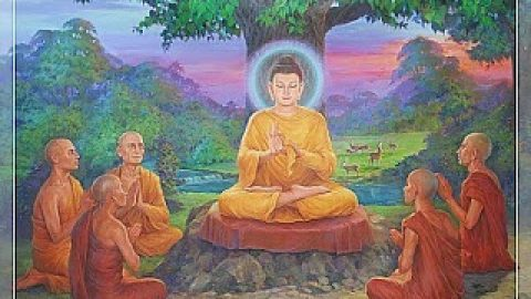 Vipassana – Towards Fluency of Mind