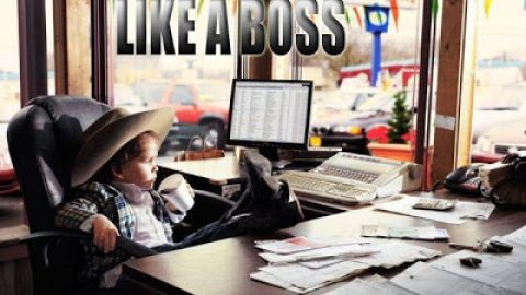 WHO IS THE BOSS ?
