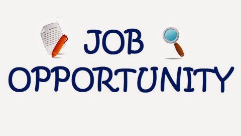 Job Opportunity in Delhi NCR !!