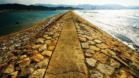 Buddha's Middle path