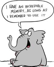 elephantmemorys