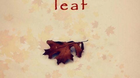 An Abandoned Leaf by Neeraj